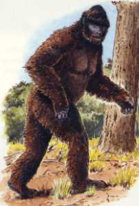 cryptozoologique (BIG fOOT, Monstre du Loch Ness....) Bigfoot